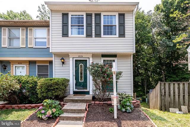 8024 Grandview Court, SPRINGFIELD, VA 22153 (#VAFX2008340) :: Debbie Dogrul Associates - Long and Foster Real Estate