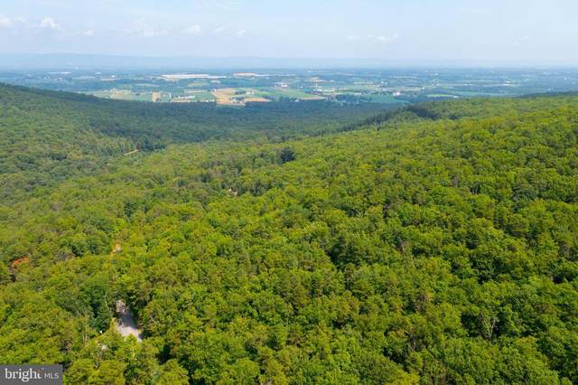 Peach Orchard Road Lot 4, NEWVILLE, PA 17241 (#PACB2001254) :: LoCoMusings
