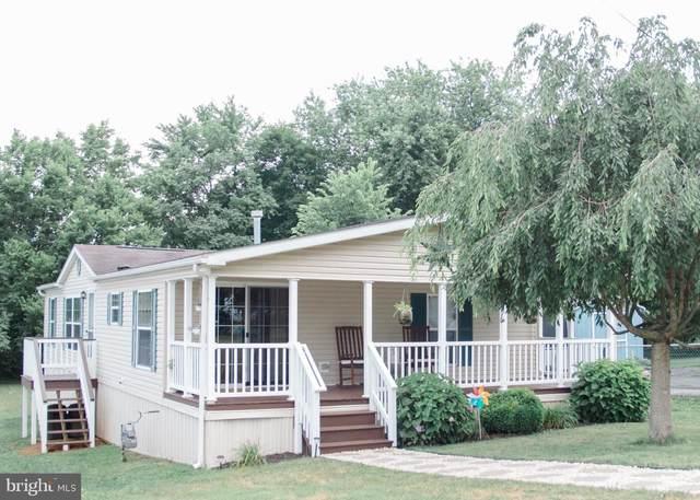 235 Vine Street, WRIGHTSVILLE, PA 17368 (#PAYK2002464) :: Liz Hamberger Real Estate Team of KW Keystone Realty
