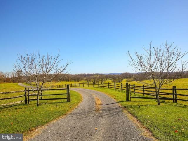 2501 Delaplane Grade Road, DELAPLANE, VA 20144 (#VAFQ2000552) :: The Lutkins Group