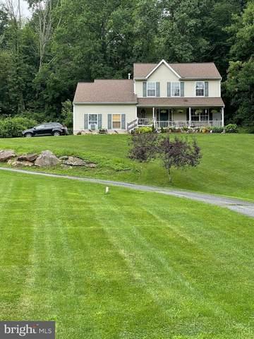 587 Forgedale Road, BARTO, PA 19504 (MLS #PABK2001678) :: Kiliszek Real Estate Experts
