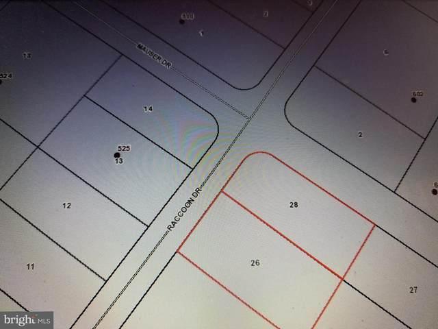 524 Raccoon Drive, WINCHESTER, VA 22602 (#VAFV2000700) :: Crossman & Co. Real Estate