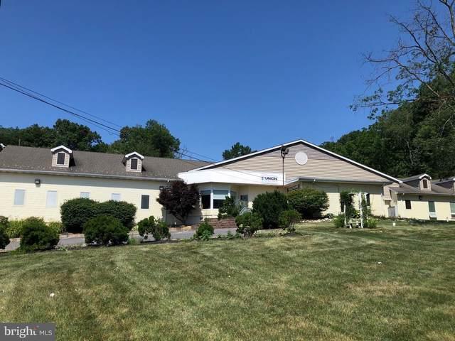 584 Springville Road, NEW HOLLAND, PA 17557 (#PALA2002076) :: The Craig Hartranft Team, Berkshire Hathaway Homesale Realty