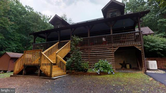 8569 Grassy Lick Road, ROMNEY, WV 26757 (#WVHS2000190) :: The Redux Group