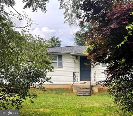 272 Piedmont Avenue, WASHINGTON, VA 22747 (#VARP2000072) :: AJ Team Realty