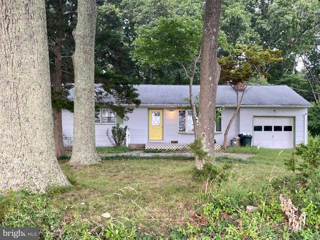 66 Back Bone Hill Road, CLARKSBURG, NJ 08510 (#NJMM2000094) :: The Lutkins Group