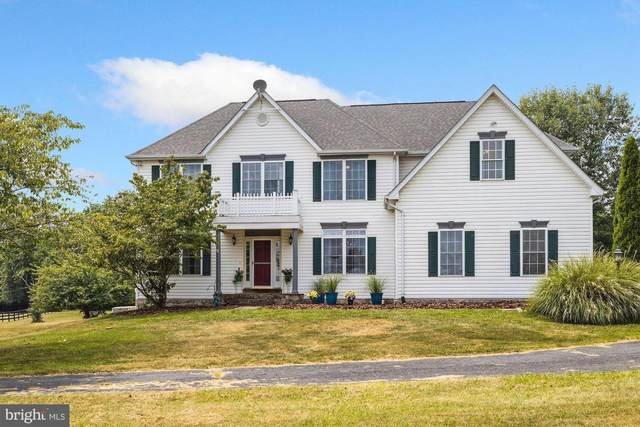 19149 Pintail Court, PURCELLVILLE, VA 20132 (#VALO2003584) :: Pearson Smith Realty