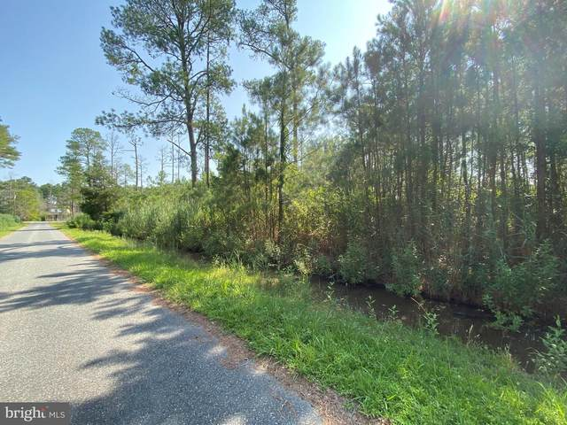 Parcel 823 Tom Coulbourne Road, CRISFIELD, MD 21817 (#MDSO2000178) :: The Rhonda Frick Team