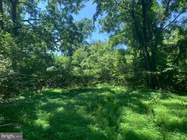 Lot 6 S South Side Drive, NEWVILLE, PA 17241 (#PACB2001356) :: LoCoMusings