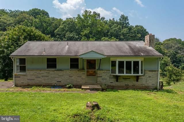 298 Old State Road, BOYERTOWN, PA 19512 (#PABK2001774) :: The Lutkins Group