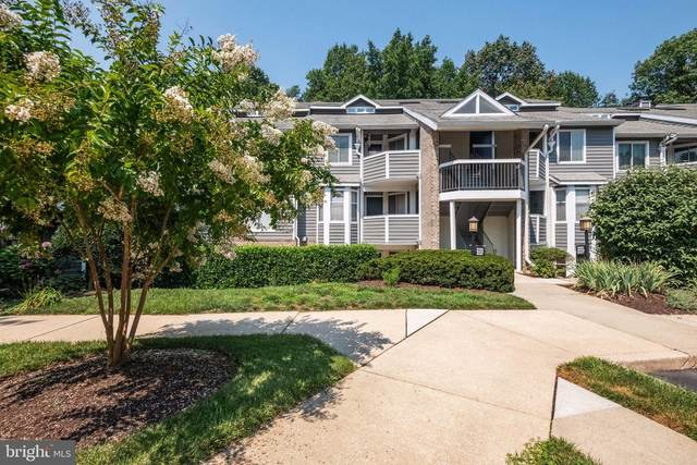 9461 Hickory Limb #205, COLUMBIA, MD 21045 (#MDHW2002114) :: Teal Clise Group