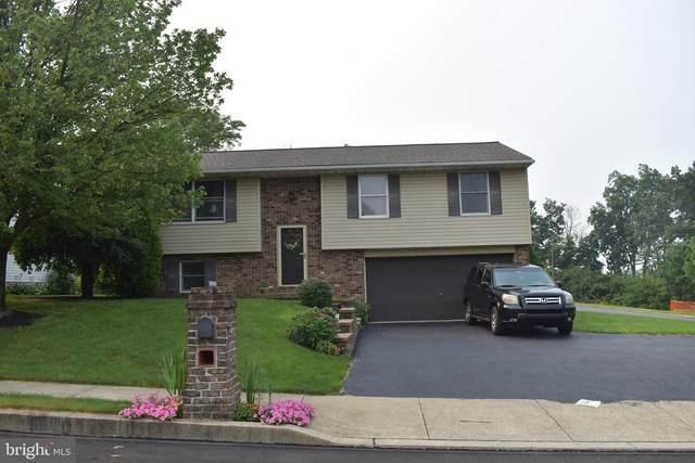 58 Hayloft Road, DENVER, PA 17517 (#PALA2002202) :: Iron Valley Real Estate