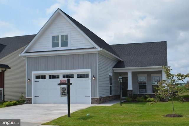 North Lake Dr., STEVENSVILLE, MD 21666 (MLS #MDQA2000462) :: Maryland Shore Living | Benson & Mangold Real Estate
