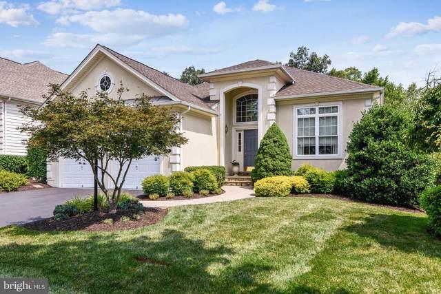 5349 Trevino Drive, HAYMARKET, VA 20169 (#VAPW2003652) :: Colgan Real Estate