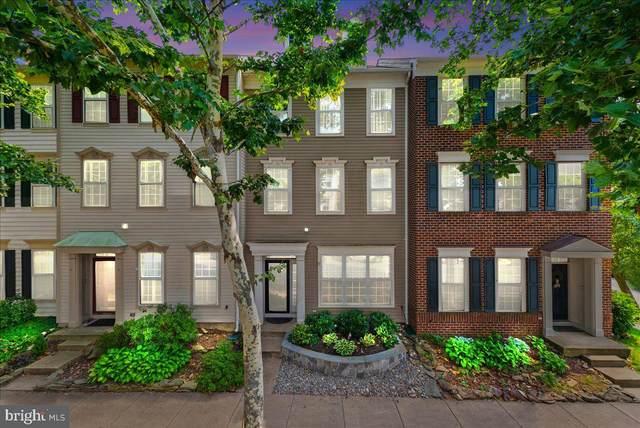 43535 Mink Meadows Street, CHANTILLY, VA 20152 (#VALO2003766) :: Sunrise Home Sales Team of Mackintosh Inc Realtors