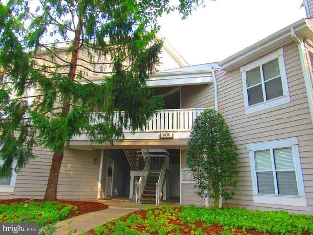 6011 Rosebud Lane #202, CENTREVILLE, VA 20121 (#VAFX2009610) :: The Miller Team