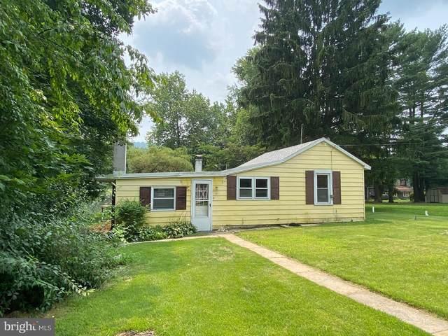 134 Lake Side Drive, FREDERICKSBURG, PA 17026 (#PALN2000672) :: TeamPete Realty Services, Inc