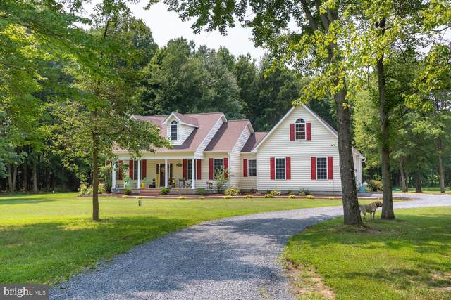105 Indian Trace, STEVENSVILLE, MD 21666 (#MDQA2000484) :: Peter Knapp Realty Group