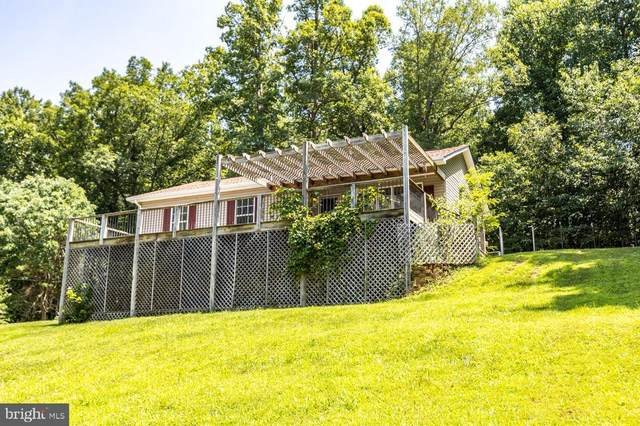 10365 River Road, RIXEYVILLE, VA 22737 (#VACU2000478) :: ExecuHome Realty
