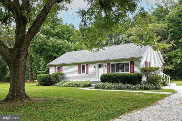 4234 Steele Neck Road, VIENNA, MD 21869 (#MDDO2000314) :: ExecuHome Realty