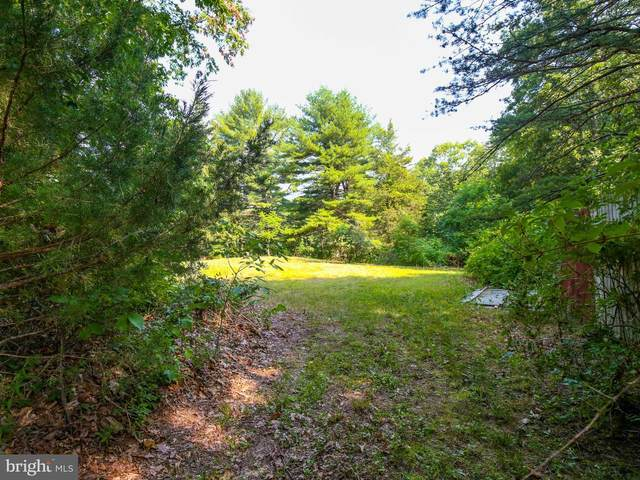 783 Conner Bowers Road, HEDGESVILLE, WV 25427 (#WVBE2001102) :: Colgan Real Estate