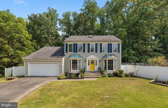 14519 Clover Hill Terrace, BOWIE, MD 20720 (#MDPG2004880) :: Jim Bass Group of Real Estate Teams, LLC