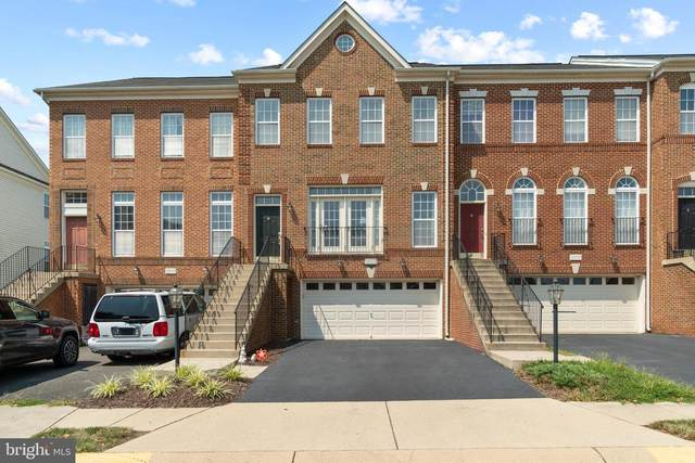42108 Tanzanite Terrace, ALDIE, VA 20105 (#VALO2003894) :: The Matt Lenza Real Estate Team
