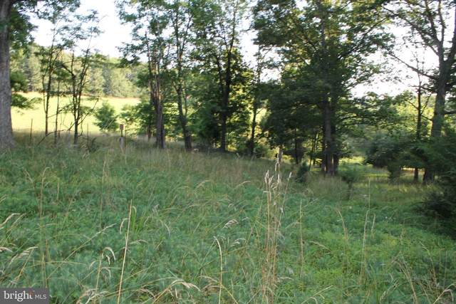 LOT 12 Edward Kidwell Road, SLANESVILLE, WV 25444 (#WVHS2000228) :: The Redux Group