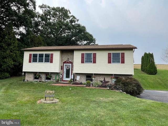 109 Linfield Trappe Road, ROYERSFORD, PA 19468 (#PAMC2005074) :: The Lutkins Group