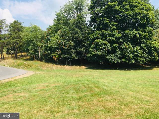 LOT 48 PINEPOINT Pinepointe S-Div, KEYSER, WV 26726 (#WVMI2000114) :: Ultimate Selling Team