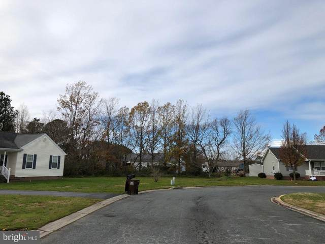 10 Heron Way, CRISFIELD, MD 21817 (#MDSO2000206) :: Teal Clise Group