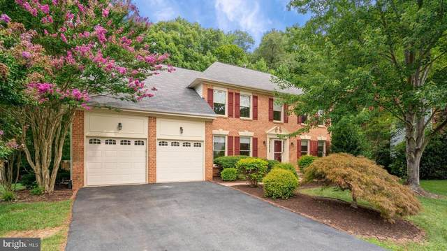18 Legal Court, STAFFORD, VA 22554 (#VAST2001608) :: Debbie Dogrul Associates - Long and Foster Real Estate