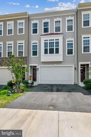 216 Apsley Terrace, PURCELLVILLE, VA 20132 (#VALO2003966) :: Bruce & Tanya and Associates