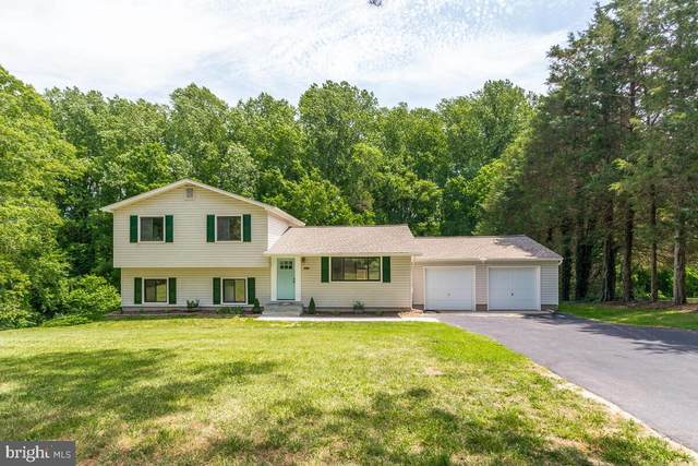 5205 Cottonwood Drive, LOTHIAN, MD 20711 (#MDAA2004422) :: The Redux Group