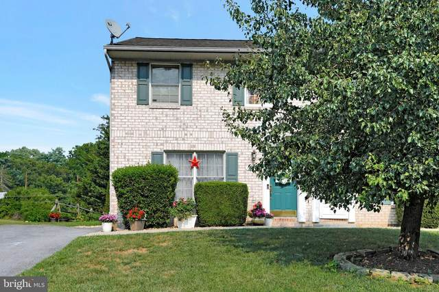 10111 St George Circle, HAGERSTOWN, MD 21740 (#MDWA2001024) :: Charis Realty Group