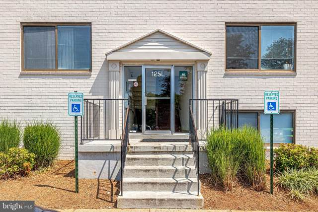 125-L Clubhouse Drive SW #10, LEESBURG, VA 20175 (#VALO2004054) :: Debbie Dogrul Associates - Long and Foster Real Estate