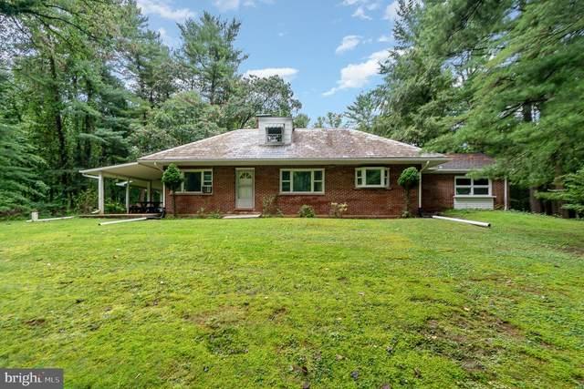 486 S Butler Road, MT GRETNA, PA 17064 (#PALN2000692) :: The Joy Daniels Real Estate Group