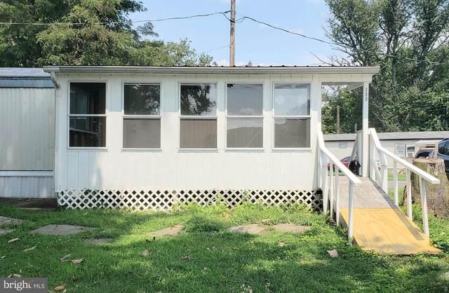 38-D Mcclellan Road, HALIFAX, PA 17032 (#PADA2001554) :: The Joy Daniels Real Estate Group