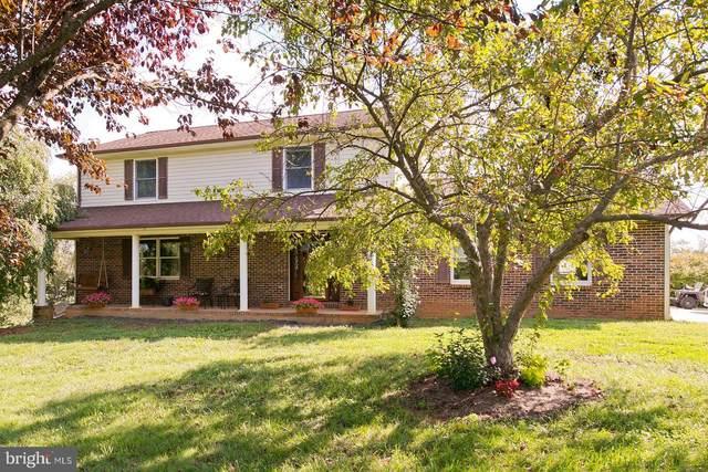 241 Clear View Lane, STRASBURG, VA 22657 (#VASH2000432) :: Colgan Real Estate
