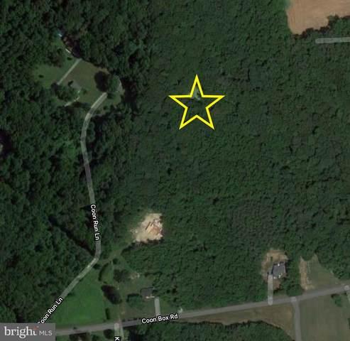 Coon Run Lane, CENTREVILLE, MD 21617 (MLS #MDQA2000514) :: Maryland Shore Living | Benson & Mangold Real Estate