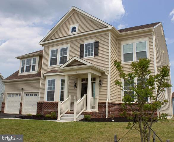 1241 N Olmsted Parkway, MIDDLETOWN, DE 19709 (#DENC2003162) :: Century 21 Dale Realty Co