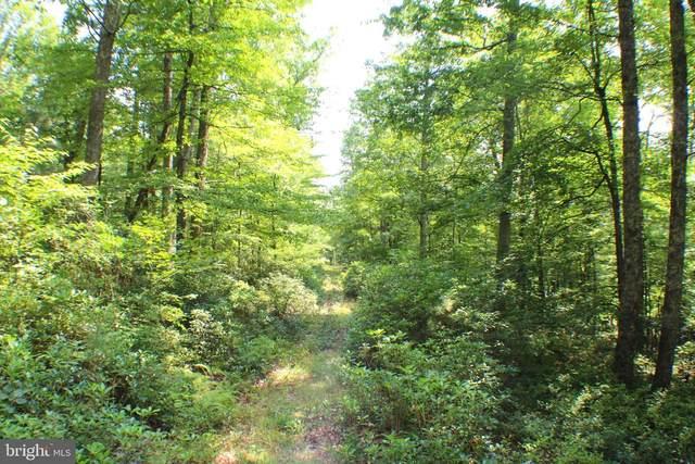 15.44 Acres High Knob Road, OLD FIELDS, WV 26845 (#WVHD2000132) :: AJ Team Realty