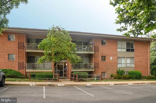 3700 N Rosser Street #203, ALEXANDRIA, VA 22311 (#VAFX2010358) :: Tom & Cindy and Associates