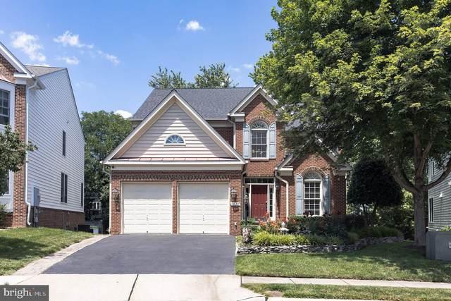 6028 Ashby Heights Circle, ALEXANDRIA, VA 22315 (#VAFX2010398) :: The Yellow Door Team