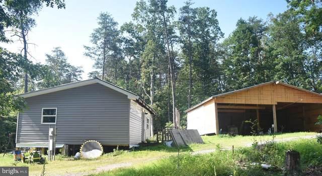46 Moose Valley Trail, BERKELEY SPRINGS, WV 25411 (#WVMO2000230) :: The MD Home Team