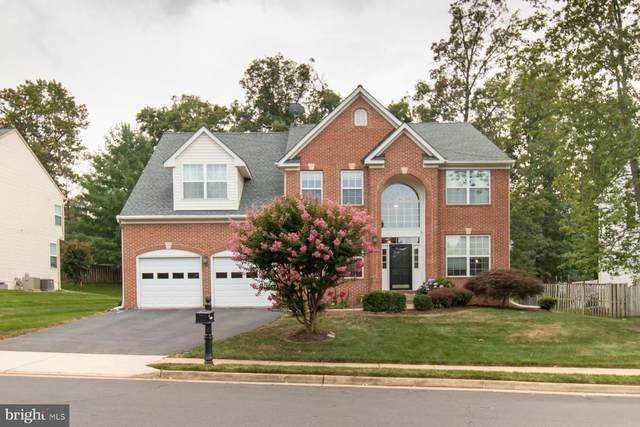 46907 Antioch Place, STERLING, VA 20164 (#VALO2004180) :: The Yellow Door Team
