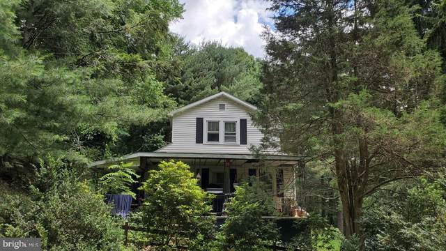12401 Amherst Avenue NE, CUMBERLAND, MD 21502 (#MDAL2000382) :: Charis Realty Group