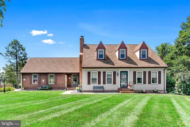 13546 Windview Court, NEW FREEDOM, PA 17349 (#PAYK2002986) :: Realty ONE Group Unlimited