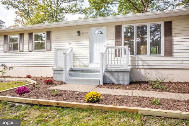 22529 Joan Drive, CALIFORNIA, MD 20619 (#MDSM2000960) :: The Dailey Group