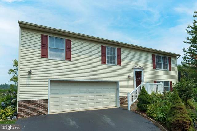 202 Meadow Lane, QUARRYVILLE, PA 17566 (#PALA2002542) :: Flinchbaugh & Associates